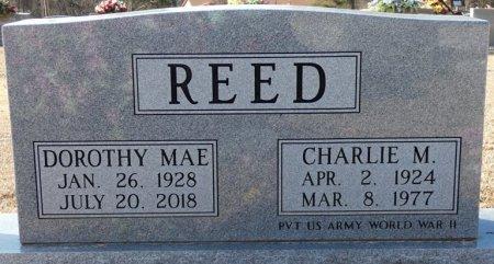REED, DOROTHY MAE - Colbert County, Alabama   DOROTHY MAE REED - Alabama Gravestone Photos