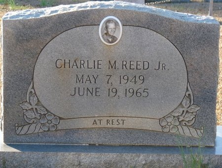 REED JR., CHARLIE M - Colbert County, Alabama   CHARLIE M REED JR. - Alabama Gravestone Photos