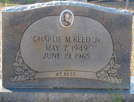 REED JR., CHARLIE M - Colbert County, Alabama | CHARLIE M REED JR. - Alabama Gravestone Photos