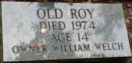 ROY, OLD - Colbert County, Alabama | OLD ROY - Alabama Gravestone Photos