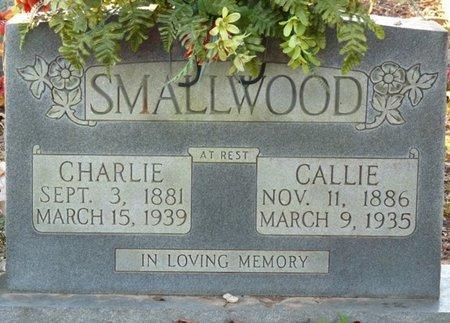 SMALLWOOD, CHARLIE - Colbert County, Alabama | CHARLIE SMALLWOOD - Alabama Gravestone Photos