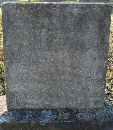 SMALLWOOD, GREENBERRY - Colbert County, Alabama | GREENBERRY SMALLWOOD - Alabama Gravestone Photos