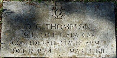 THOMPSON (VETERAN CSA), DAVID C - Colbert County, Alabama | DAVID C THOMPSON (VETERAN CSA) - Alabama Gravestone Photos