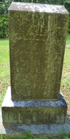 TUBERVILLE, LABAN JOHN - Colbert County, Alabama | LABAN JOHN TUBERVILLE - Alabama Gravestone Photos
