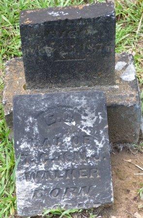 WALKER, E.C. - Colbert County, Alabama   E.C. WALKER - Alabama Gravestone Photos
