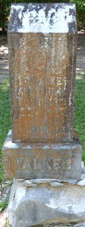 WALKER, T.C. - Colbert County, Alabama | T.C. WALKER - Alabama Gravestone Photos