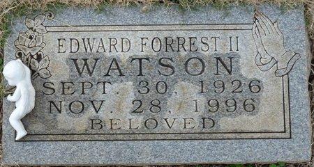 WATSON II, EDWARD FORREST - Colbert County, Alabama | EDWARD FORREST WATSON II - Alabama Gravestone Photos