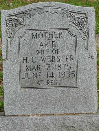 WEBSTER, ARIE - Colbert County, Alabama | ARIE WEBSTER - Alabama Gravestone Photos