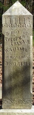 WILLIAMS, INFANT - Colbert County, Alabama | INFANT WILLIAMS - Alabama Gravestone Photos