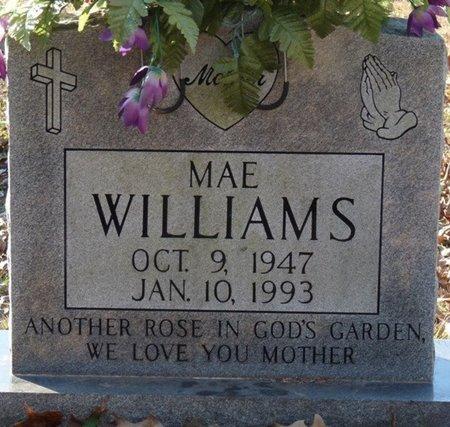 WILLIAMS, MAE - Colbert County, Alabama | MAE WILLIAMS - Alabama Gravestone Photos