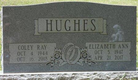 MOTES HUGHES, ELIZABETH ANN - Fayette County, Alabama | ELIZABETH ANN MOTES HUGHES - Alabama Gravestone Photos