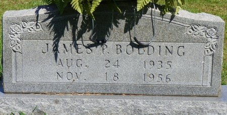 BOLDING, JAMES P - Franklin County, Alabama | JAMES P BOLDING - Alabama Gravestone Photos