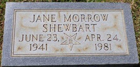 SHEWBART, JANE - Franklin County, Alabama | JANE SHEWBART - Alabama Gravestone Photos