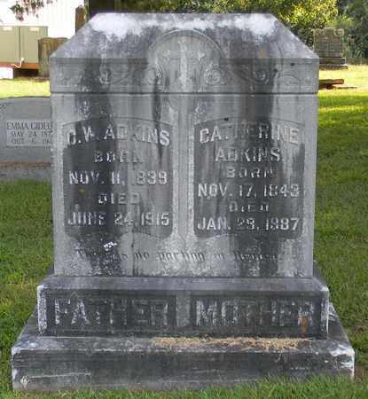 ADKINS, C W - Jackson County, Alabama | C W ADKINS - Alabama Gravestone Photos