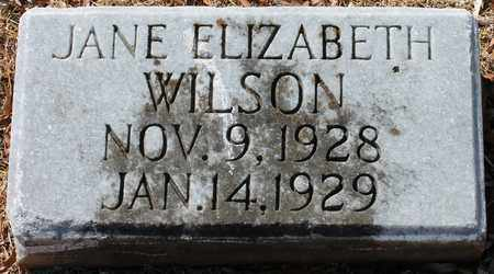 WILSON, JANE ELIZABETH - Jefferson County, Alabama | JANE ELIZABETH WILSON - Alabama Gravestone Photos