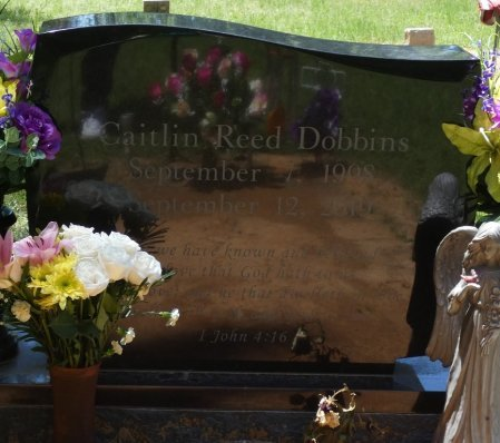 DOBBINS, CAITLIN REED - Lamar County, Alabama | CAITLIN REED DOBBINS - Alabama Gravestone Photos