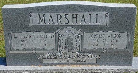 MARSHALL, L ELIZABETH - Lamar County, Alabama | L ELIZABETH MARSHALL - Alabama Gravestone Photos