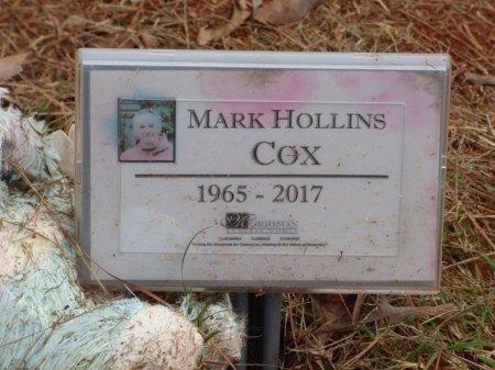 COX, MARK HOLLINS - Lauderdale County, Alabama | MARK HOLLINS COX - Alabama Gravestone Photos