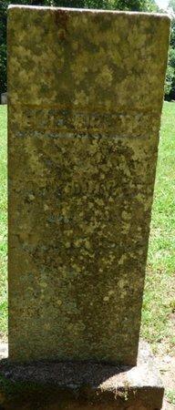 DUCKETT, NANCY ELIZABETH - Lauderdale County, Alabama   NANCY ELIZABETH DUCKETT - Alabama Gravestone Photos