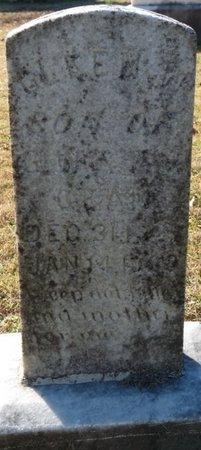 GEAN, GLENN W - Lauderdale County, Alabama | GLENN W GEAN - Alabama Gravestone Photos