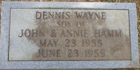 HAMM, DENNIS WAYNE - Lauderdale County, Alabama | DENNIS WAYNE HAMM - Alabama Gravestone Photos