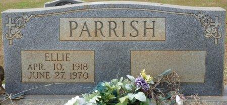PARRISH, ELLIE - Lauderdale County, Alabama | ELLIE PARRISH - Alabama Gravestone Photos