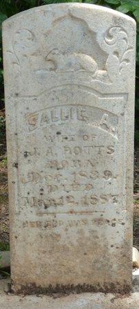 POTTS, WALTER B - Lauderdale County, Alabama | WALTER B POTTS - Alabama Gravestone Photos