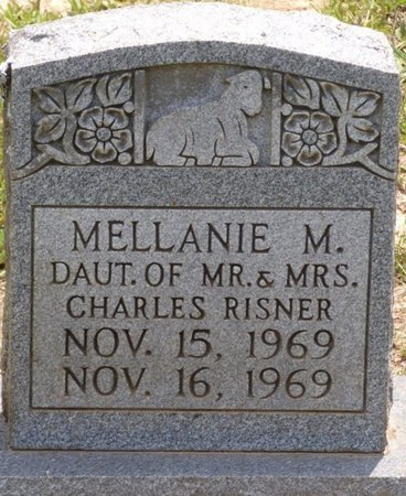 RISNER, MELLANIE M - Lauderdale County, Alabama | MELLANIE M RISNER - Alabama Gravestone Photos