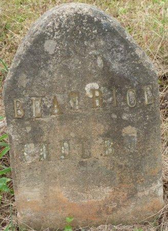 SHELBY, BEATRICE - Lauderdale County, Alabama | BEATRICE SHELBY - Alabama Gravestone Photos