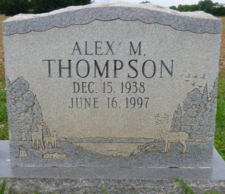 THOMPSON, ALEX M - Lauderdale County, Alabama | ALEX M THOMPSON - Alabama Gravestone Photos