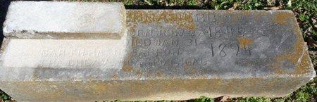WEBB, EMMA - Lauderdale County, Alabama   EMMA WEBB - Alabama Gravestone Photos