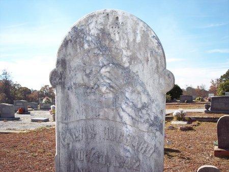 HUBBARD, CALVIN - Macon County, Alabama | CALVIN HUBBARD - Alabama Gravestone Photos