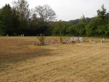 *BALDWIN CEMETERY OVERVIEW,  - Madison County, Alabama |  *BALDWIN CEMETERY OVERVIEW - Alabama Gravestone Photos