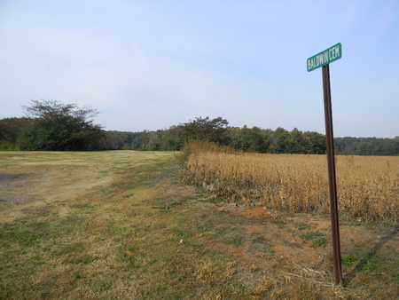 *BALDWIN SIGN & ENTRANCE, . - Madison County, Alabama | . *BALDWIN SIGN & ENTRANCE - Alabama Gravestone Photos