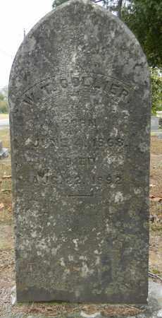 COLLIER, W T - Madison County, Alabama | W T COLLIER - Alabama Gravestone Photos
