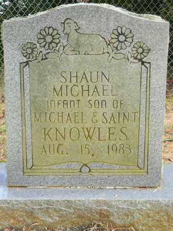 KNOWLES, SHAUN MICHAEL - Madison County, Alabama | SHAUN MICHAEL KNOWLES - Alabama Gravestone Photos
