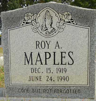 MAPLES, ROY A - Madison County, Alabama | ROY A MAPLES - Alabama Gravestone Photos