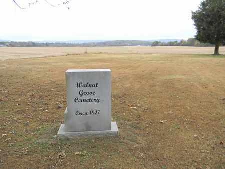 *WALNUT GROVE CEMETERY VIEW,  - Madison County, Alabama |  *WALNUT GROVE CEMETERY VIEW - Alabama Gravestone Photos