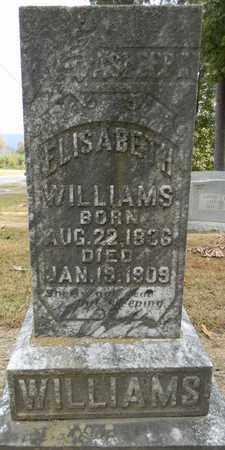 WILLIAMS, ELISABETH - Madison County, Alabama | ELISABETH WILLIAMS - Alabama Gravestone Photos