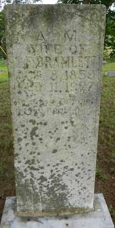 BRAMLETT, A M - Marshall County, Alabama | A M BRAMLETT - Alabama Gravestone Photos