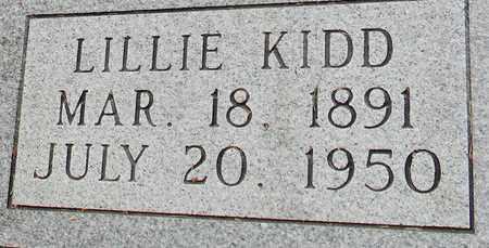 BRAMLETT (CLOSEUP), LILLIE - Marshall County, Alabama | LILLIE BRAMLETT (CLOSEUP) - Alabama Gravestone Photos