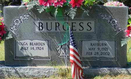 BURGESS, RAYBURN - Marshall County, Alabama | RAYBURN BURGESS - Alabama Gravestone Photos