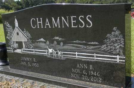 CHAMNESS, ANN B - Marshall County, Alabama | ANN B CHAMNESS - Alabama Gravestone Photos