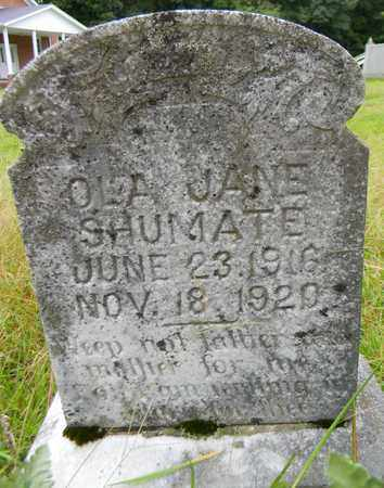 SHUMATE, OLA JANE - Marshall County, Alabama | OLA JANE SHUMATE - Alabama Gravestone Photos