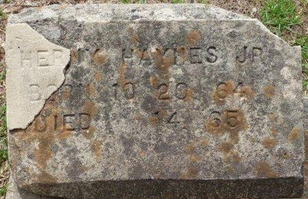 HAYNES JR., HERNY - Pike County, Alabama | HERNY HAYNES JR. - Alabama Gravestone Photos